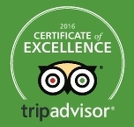 TripAdvisor 2016 Award Winners