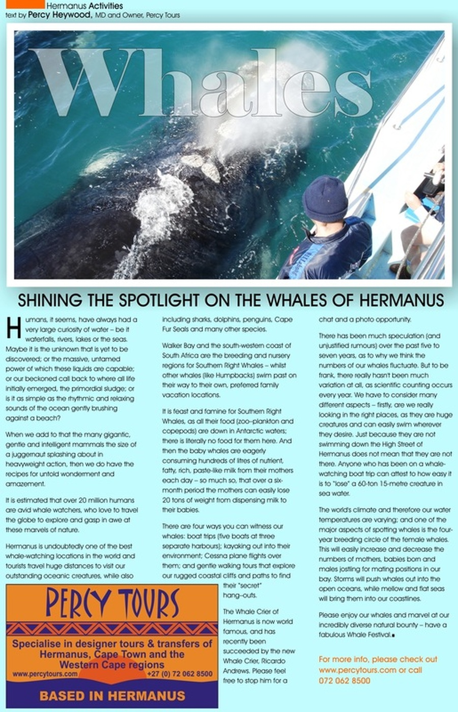 Whales and Whale Watching in Hermanus, South Africa