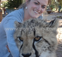 Safari and African animal encounters near Hermanus