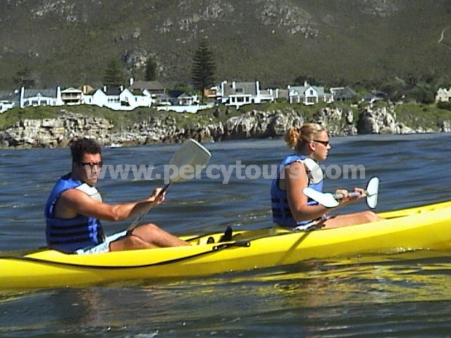 Kayaking with the Whales of Hermanus