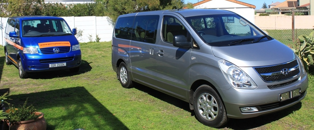 Luxury minibuses at Percy Tours, Hermanus