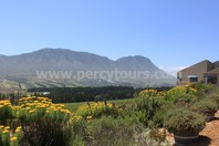 Hermanus wine valley, wineries, cellars, near Cape Town, South Africa
