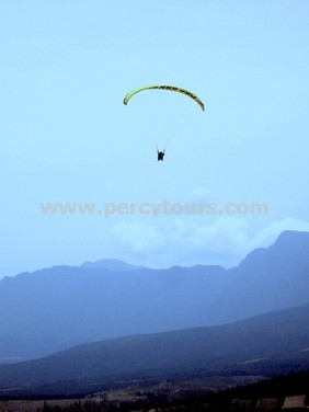 Paragliding flights over Hermanus