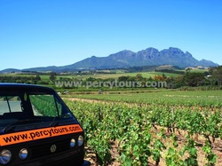 Wine Tour of Stellenbosch