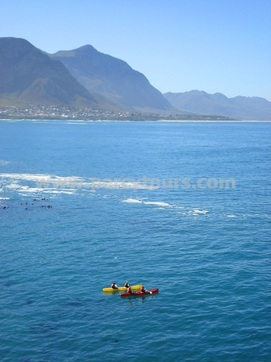 Kayaking trips Hermanus