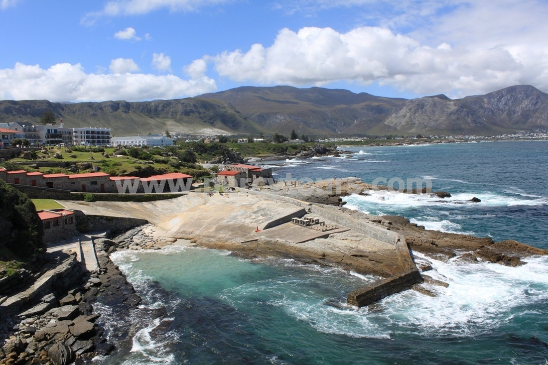 Hermanus Old Harbour