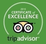 TripAdvisor award for Percy Tours HermanusPicture