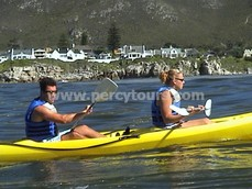 Sea Kayaking with the whales, Hermanus