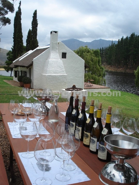Wine tasting tours, wine tours, winery, Hermanus wine valley, near Cape Town, South Africa