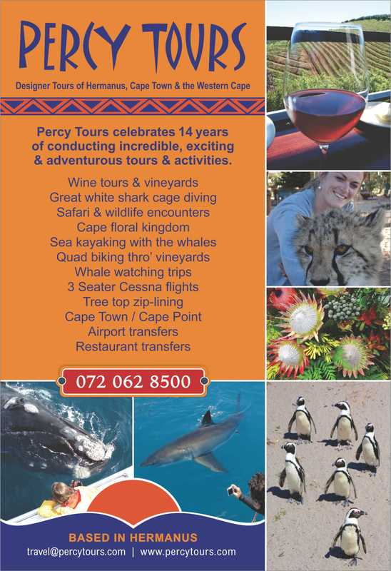 Percy Tours of Hermanus celebrates, in 2017, over 14 years of conducting tours, activities and adventures of Hermanus, Cape Town and the Western Cape