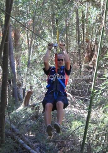 Tree Top Zip-Lining canopy slides, Hermanus