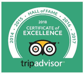 5 years of excellent reviews on TripAdvisor Hall of Fame Percy Tours Hermanus