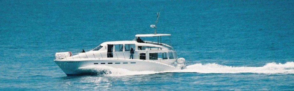 Luxury 70 person Catamaran Whale Watching boat trips cruise the sea & explore the incredibly scenic coast of Hermanus