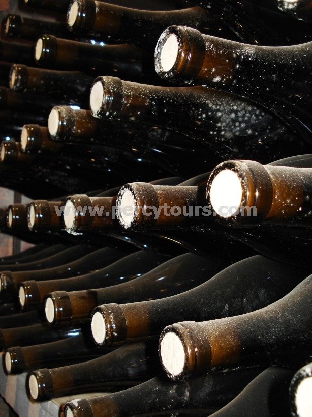 Wine bottles in cellar, wine tours, winery, Hermanus, near Cape Town, South Africa